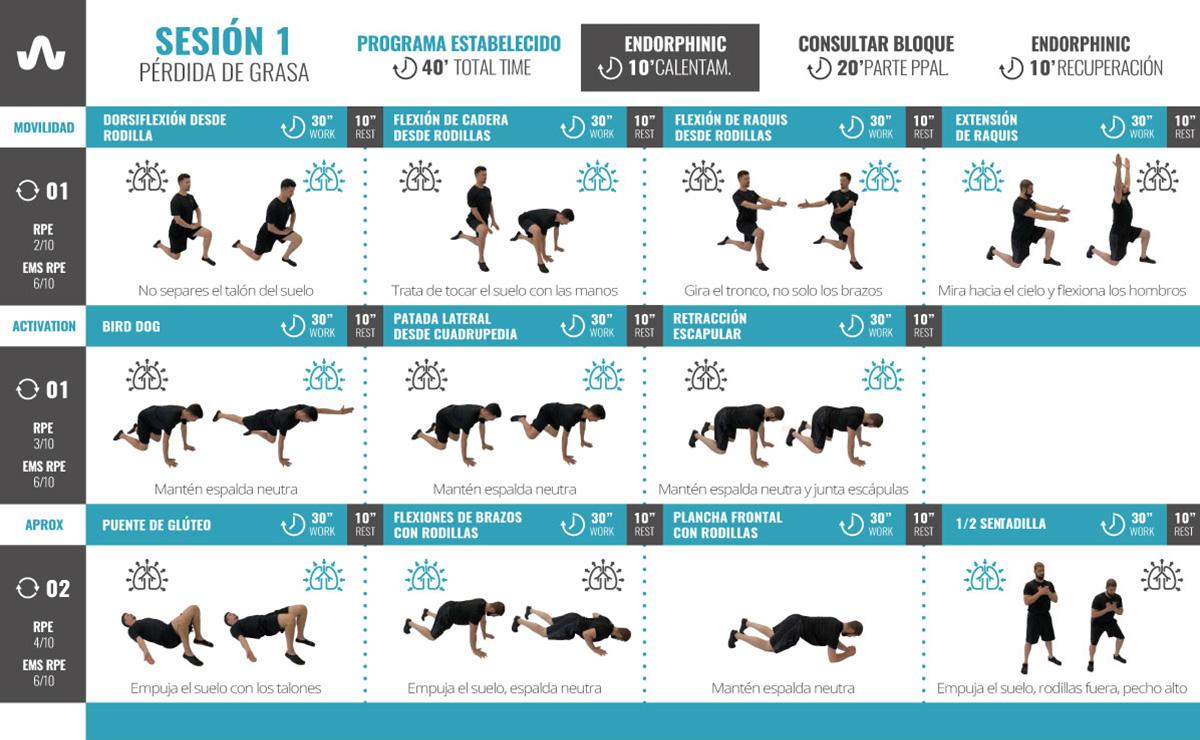perdida-de-grasa-ejercicios